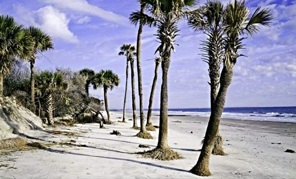 Hunting Island state park Beach, camping, Lighthouse ...